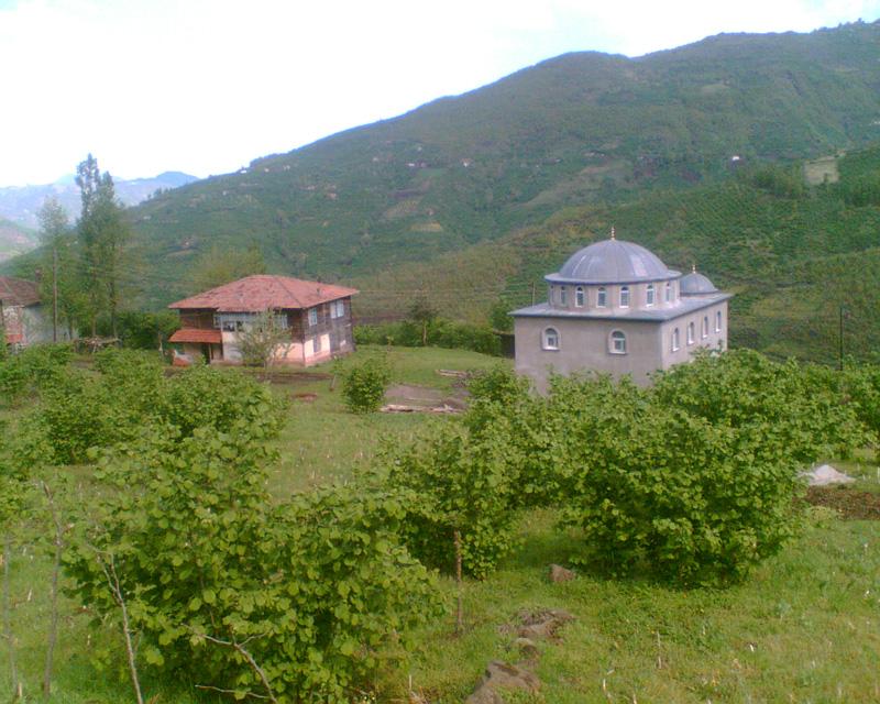 kargi2008-1.jpg