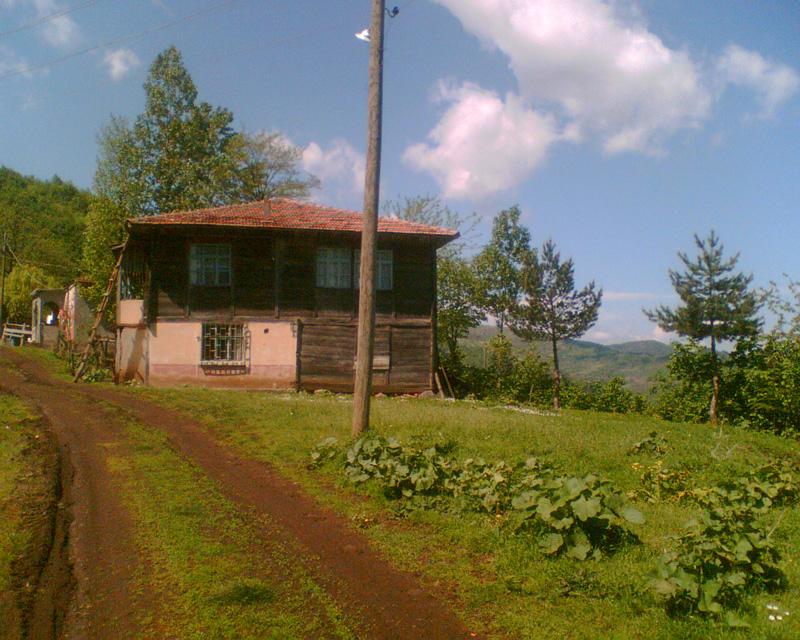 kargi2008-4.jpg