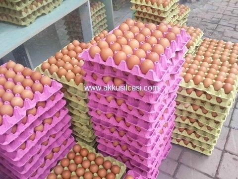 Akkuş Ziraat Odası; Fasulyeden Sonra İlçenin Yumurta İşine de El Atarak, İnanılmaz Başarılı Çalışmayı Gerçekleştirdi. Akkuş Yumurtası İstanbul'da Satışa Sunuldu