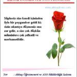 Akkuş Anadolu İmam Hatip Kutlu Doğum Programı