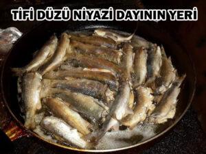 niyazi_dayinin_yeri