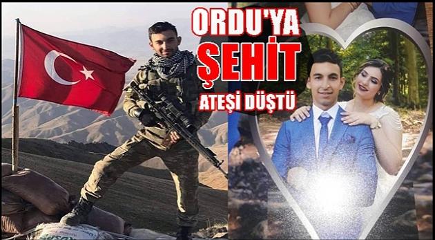 Hakkari'nin Yüksekova ilçesinde PKK'lı teröristlerle çıkan çatışmada şehit olan Ordu/ Fatsa'lı Uzman Çavuş Volkan Demirci'nin sosyal medya paylaşımı yürekleri sızlattı.