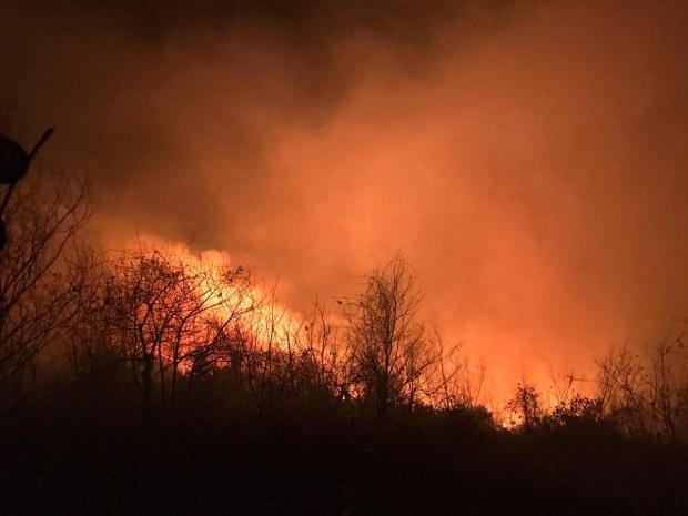 İçişleri Bakanlığından Karadeniz'deki orman yangınlarıyla ilgili açıklama!